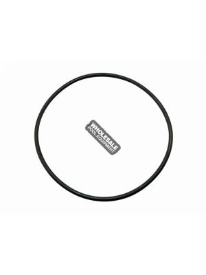 Pentair 350166 Gasket For EQ-Series Commercial Pump Hair and Lint Strainer Lid