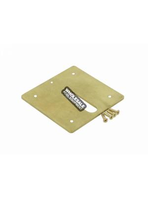 Zodiac MJ6370 Cover Plate with 4 Screws For Minijet Water Designs; Brass