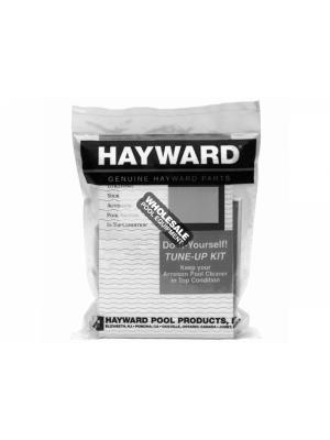 Hayward RCX97417SPAK2 Door Filter Element For AquaVac(R) 500 Series; SharkVac/SharkVac XL Robotic Pool Cleaner; 2/Set