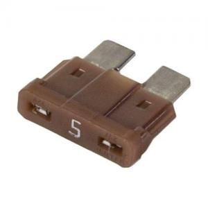 Raypak 013733F Fuse For Model 206A; 266A Pool Heater; 5 A