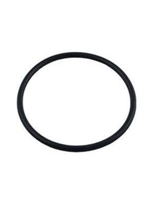 Pentair 39101900 Buna-N Lid O-Ring For Maxim Pool and Spa Pump