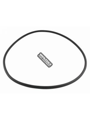 Pentair 35505-0421 O-Ring For Sta-Rite(R) Cast Iron Suction Trap Assembly Pool and Spa Commercial Pump PKG No.184; 184C; 184E; 184CE