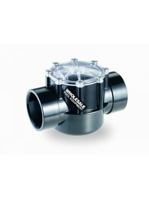 Pentair 263042 CPVC Check Valve, 2-2.5""