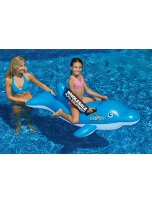 International Leisure Products, 90453, Swimline Water Sports, Swimline(R)Inflatable Ride-Ons, Blue Dolphin(TM) Ride-On