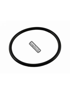 Waterway Plastics 805-0339 O-Ring For Bulkhead Coupler of Crystal Water Cartridge & D.E. Filter
