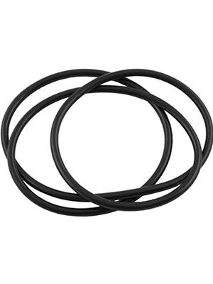 Waterway Plastics 805-0460B Bagged Lid O-Ring For ClearWater II Cartridge & D.E. Filter
