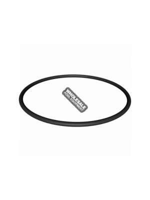 Hayward SPX4000S Strainer Cover O-Ring For NorthStar(TM) SP4000 and SP4000X Series Pump