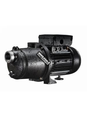 Pentair Boost-Rite Pressure Cleaner Booster Pump - 1.1HP