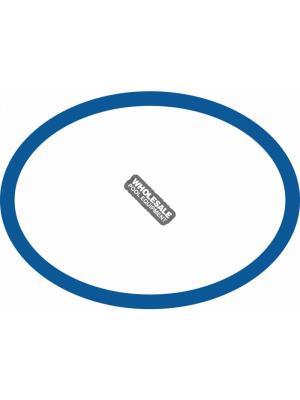 Paramount 005-302-0100-00 Valve Base O-Ring For PCC 2000; Pool Valet; PV3; CyClean; Vanquish; Hydro Valve