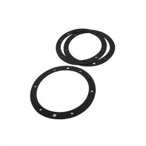 Pentair 79204603 Gasket Set without Double Wall Gasket For Small Stainless Steel Niche; 6-1/2 Inch