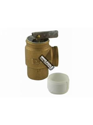 Pentair 473715Z Pressure Relief Valve For Max-E-Therm and MasterTemp(R) Heater Water System