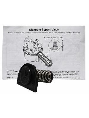 Pentair 77707-0001 Manifold By-Pass Valve Kit For MasterTemp(R) Heater Burner System