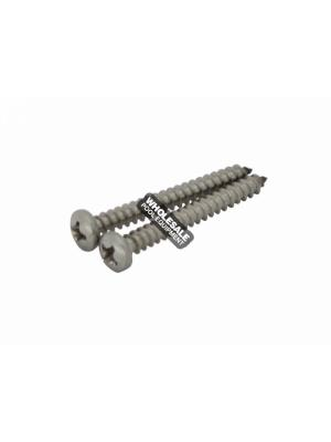 Pentair JV48 Tire Screw For Back Wheel Jet-Vac JV105 Automatic Pool Cleaner; 2/Pack