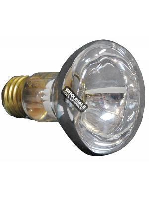 Pentair R20 Medium Flood Bulb 100 W; 12 V