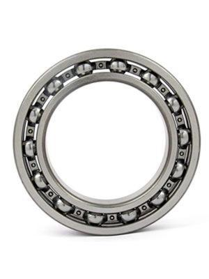 Horizon Ventures 2006 LARGE BEARING