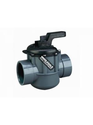 Pentair 263029 PVC 2-Way Valve, 2-2.5""