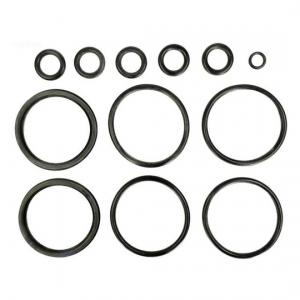 Hayward FDXLFOR1930 Header O-Ring Kit For H150FD/H200FD/H250FD/H300FD/H350FD/H400FD Heaters