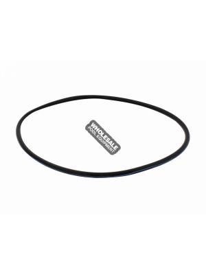 Pentair O-Ring W/ Blue Strips Kit