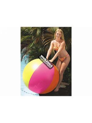 "INTERNATIONAL LEISURE 46"" PANEL BEACH BALL"