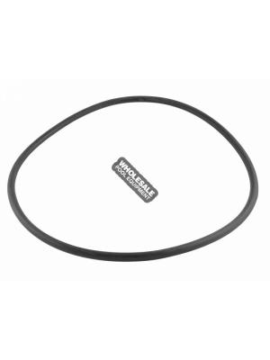Pentair 356780 Seal Plate O-Ring For EQ-Series Commercial Plastic Pump with and without Hair and Lint Strainer